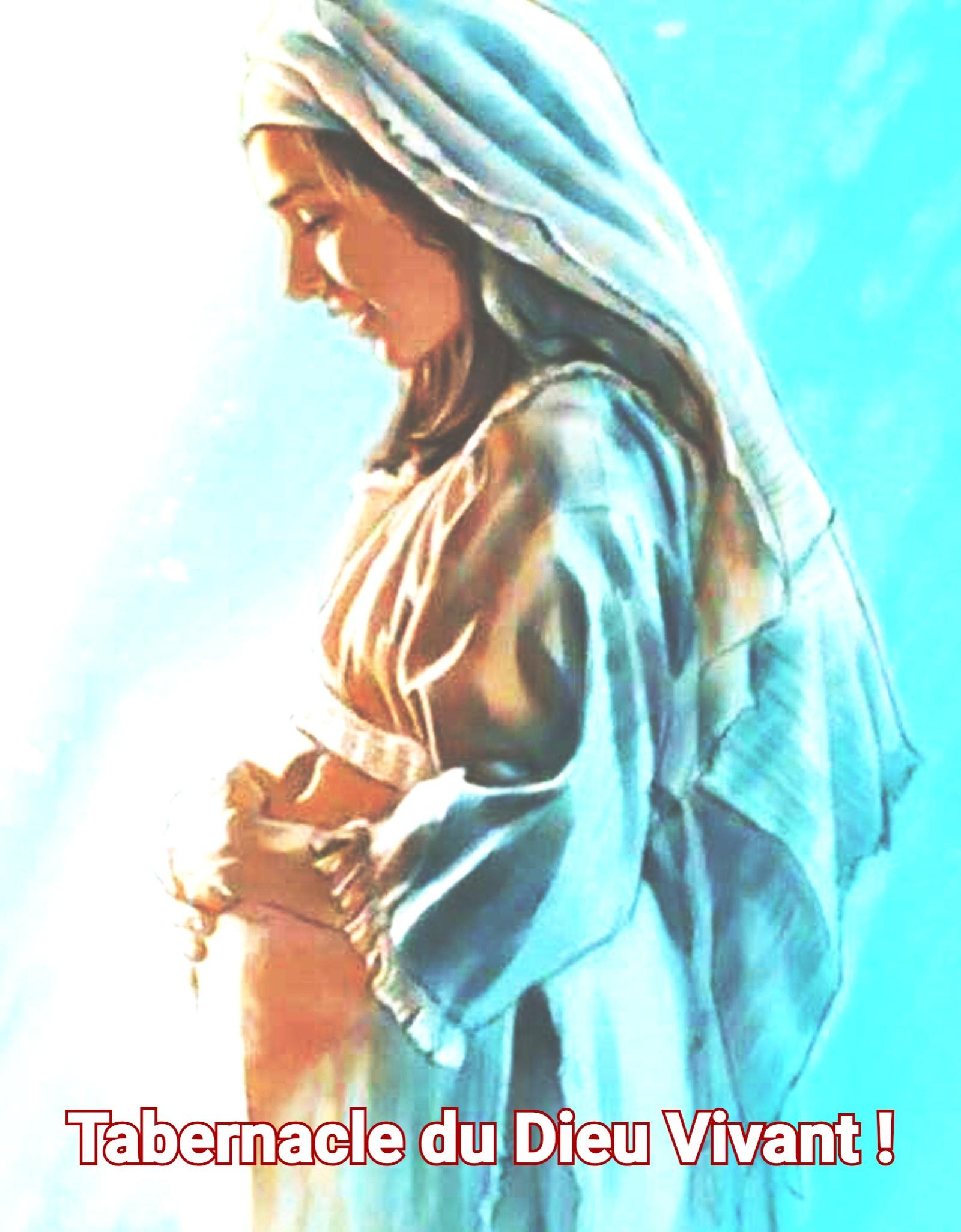 12 - Réjouis-Toi Marie, Tabernacle du Dieu Vivant ! - Jésus par Marie