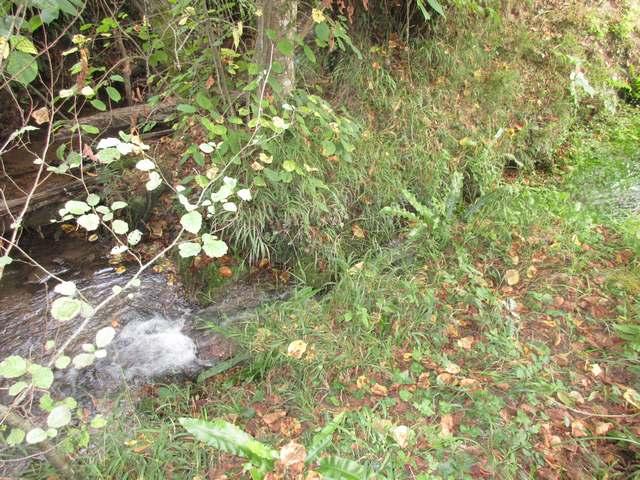 La toute petite cascade de Fauvel.jpg