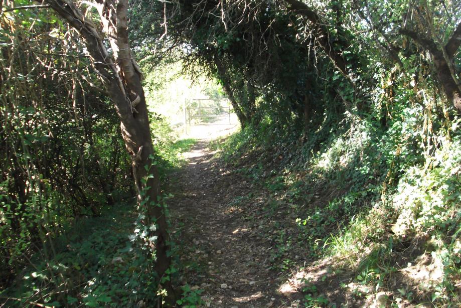Chemin de La Pique.jpg