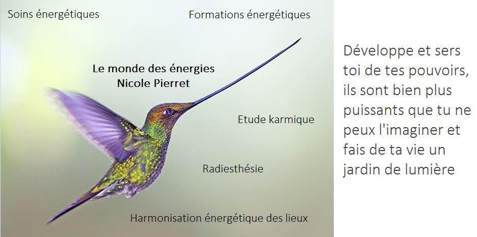 le monde des énergies nicole pierret1