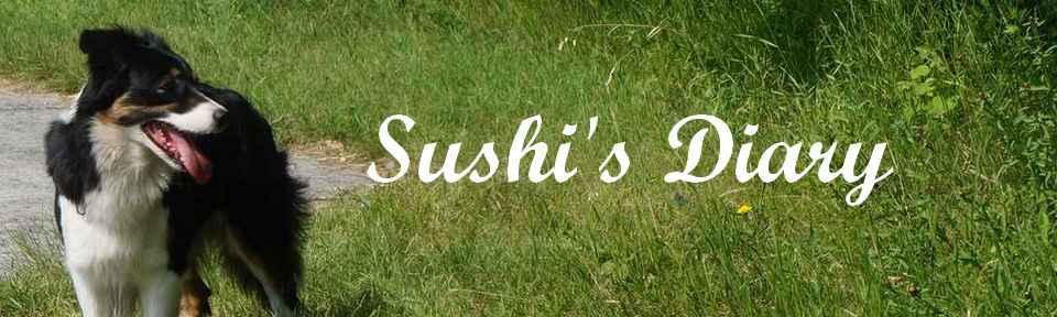 sushi-s-diary