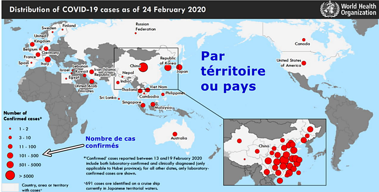 Distribution COVID-19 cases on 24 Feb 2020
