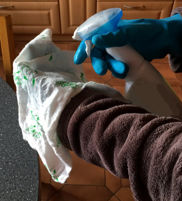 Spray bottle, gloves and cloth