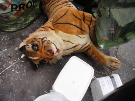 Tigre -rue Haxo -Paris 20ème - mars 2012