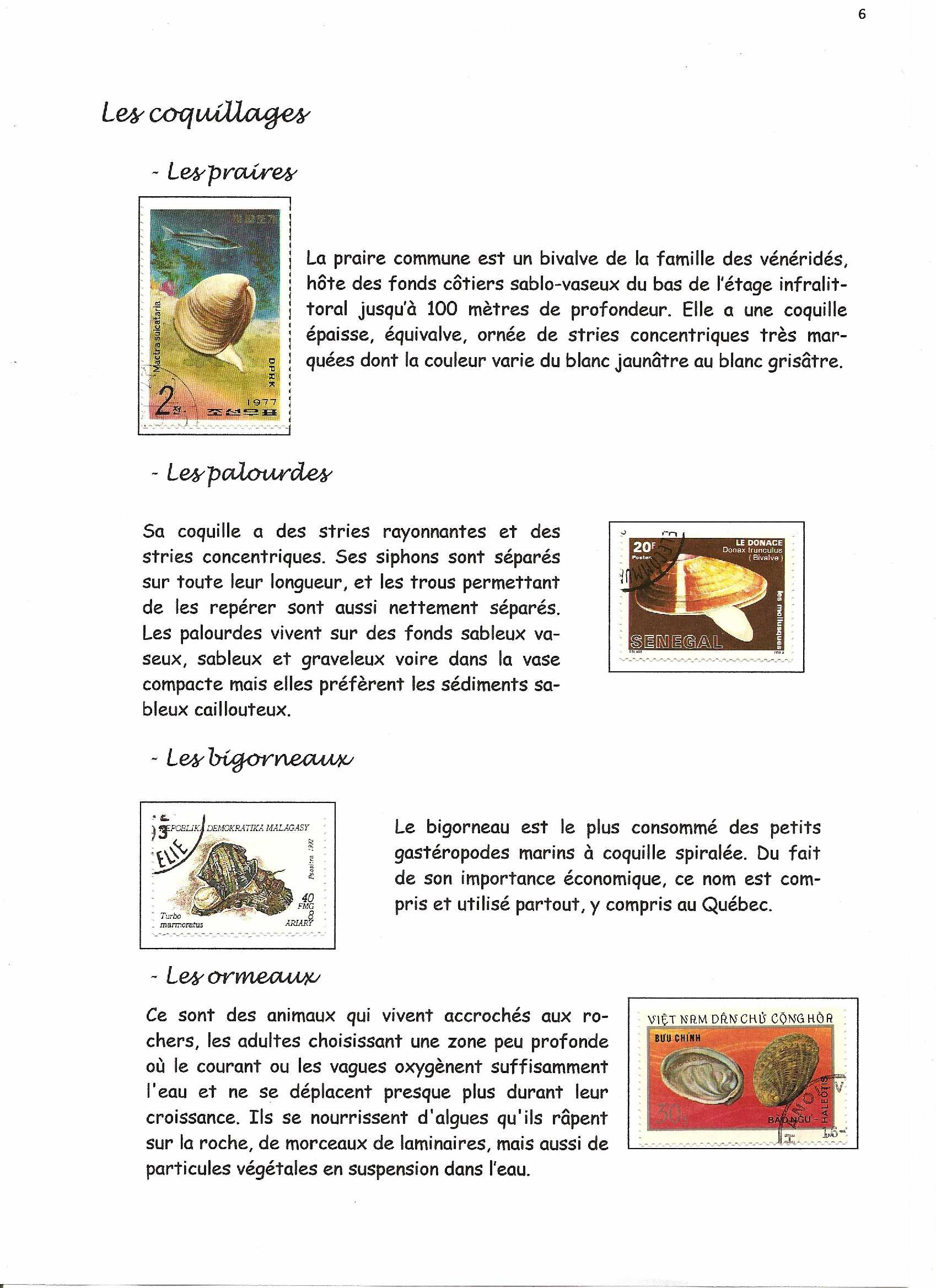 page 06b