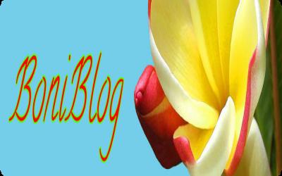 BoniBlog V3.4
