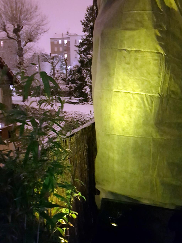 Mur extérieur sous neige 7 fev 18