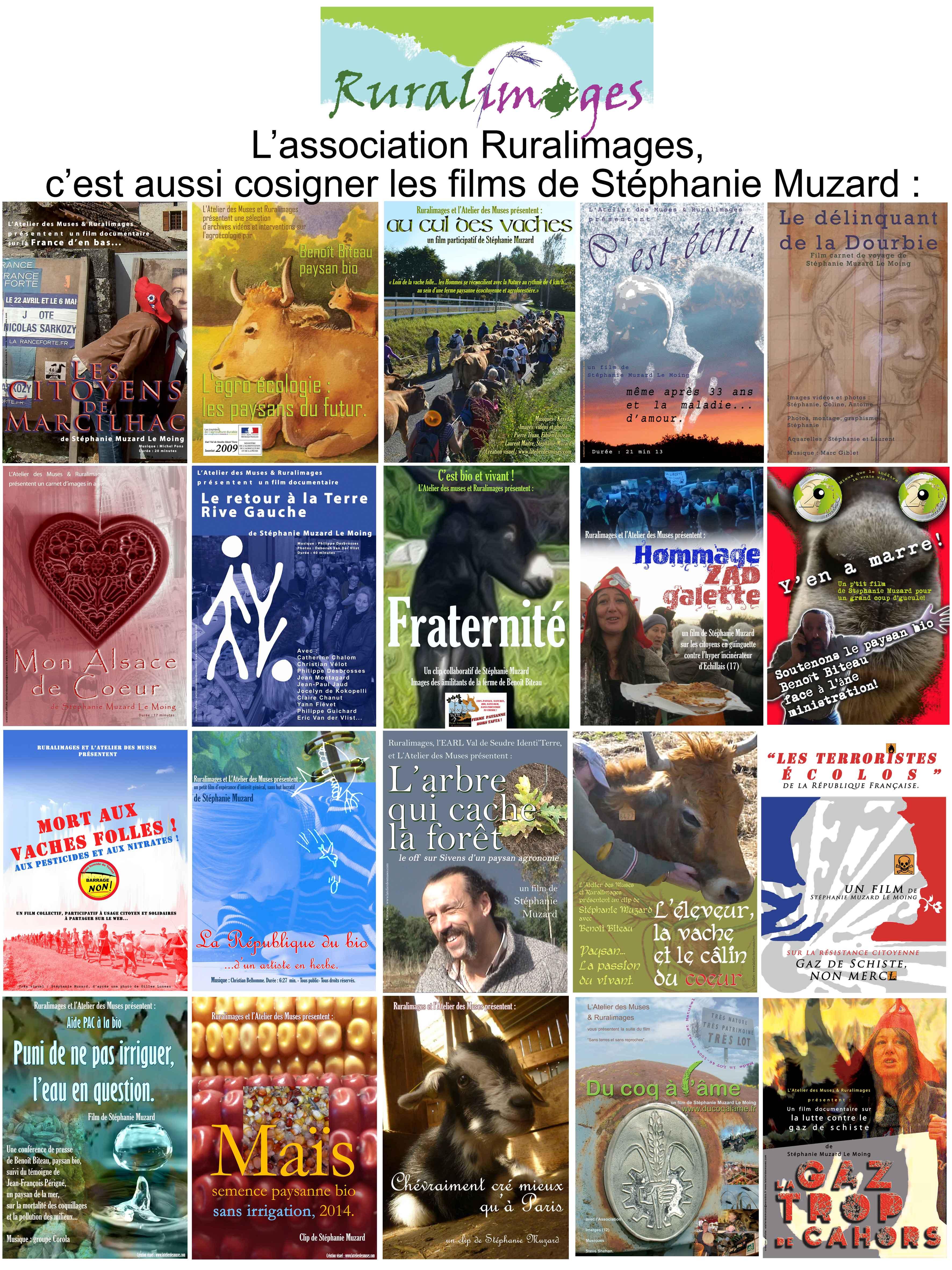 20janv16_poster_films_depuis_2011