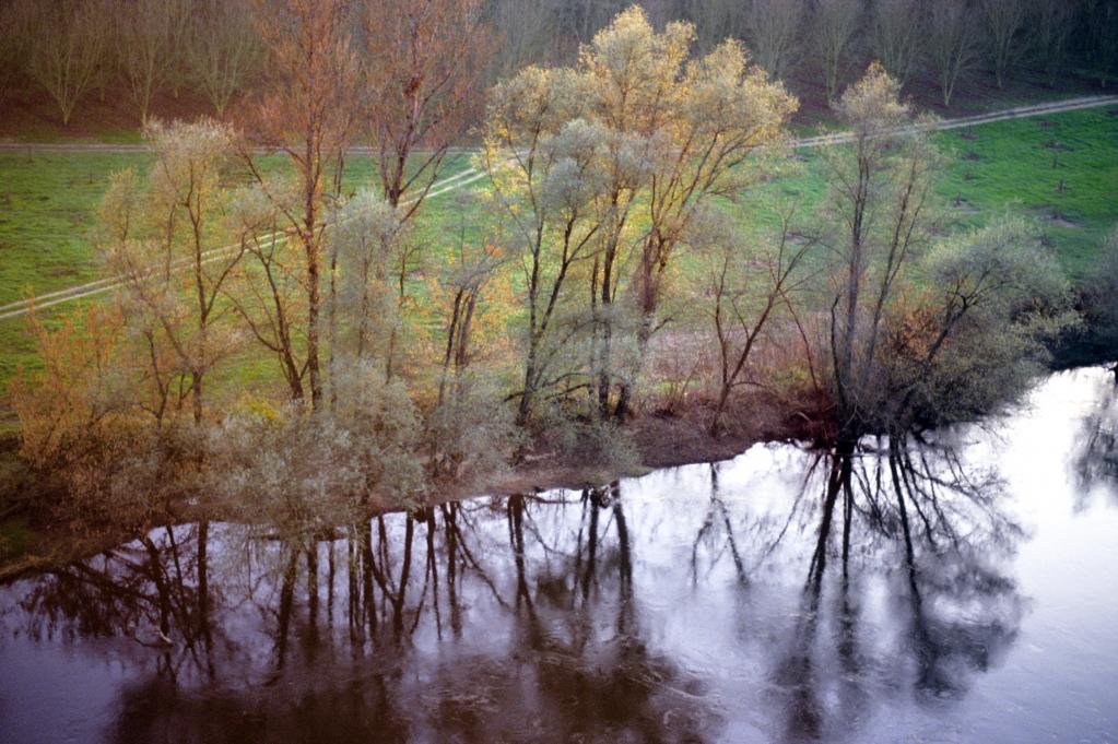 12 - Reflet des arbres dans le single de Monfort