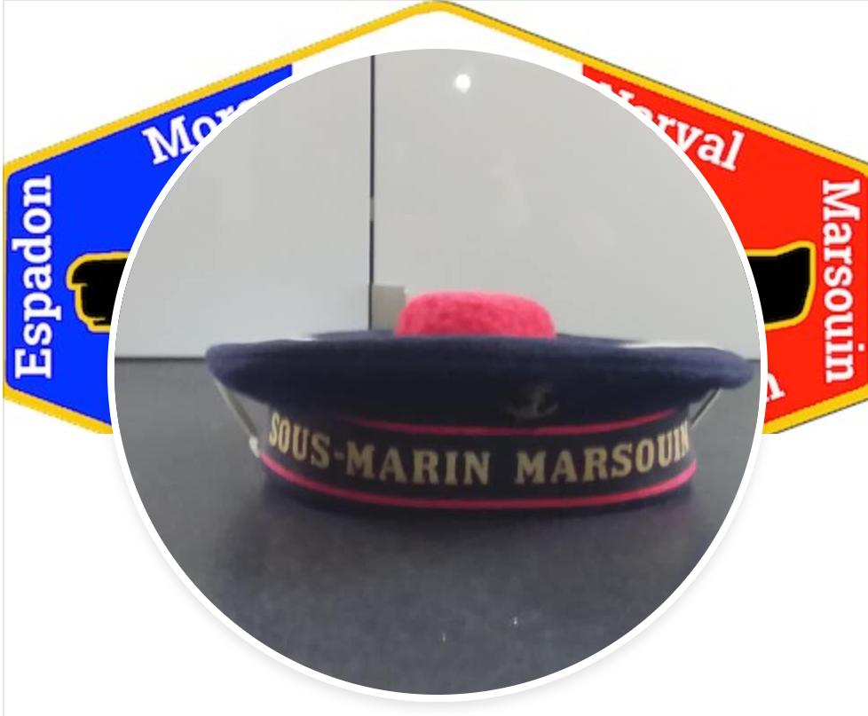 Marsouin bonnet