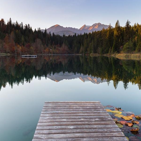 lac flims-1