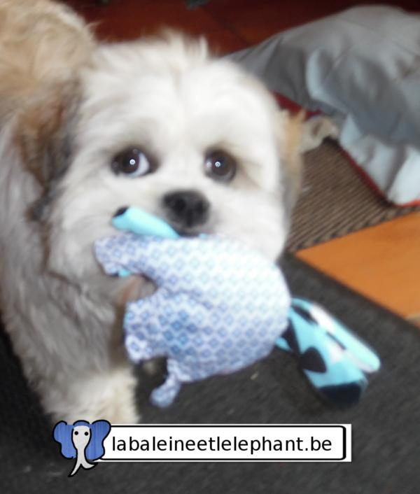 tuto-gratuit-jouet-elephant-chien11