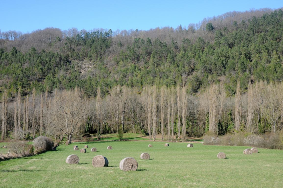 04 - St Germain de Belvès - Aux environs de Pessat 01 blog