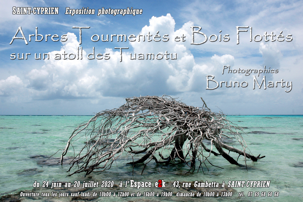 PHOTO 01 Affiche EXPO  BOIS FLOTTES sur un atoll des Tuamotu