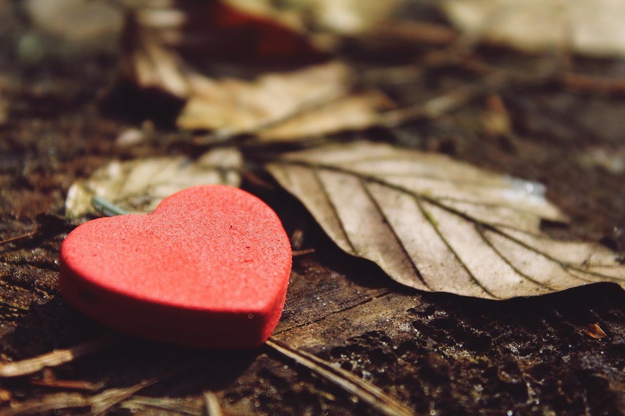Le cœur qui fait boum boum.